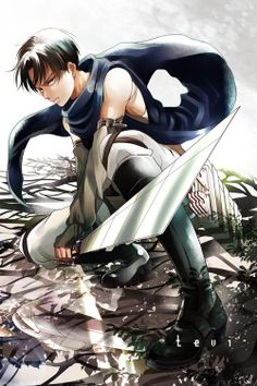 Levi - Attack on Titan (Shingeki no Kyojin)