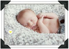 More newborn photography tips