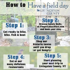 How to have a field day in Livingston County, NY.