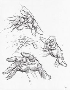 soullesshusk: The Hands from Dynamic Figure Drawing by Burne Hogarth
