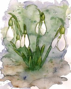 Floral Cards, Set of 10 Folded Cards with Envelopes, Easter Cards, Spring Cards, Snow Drop - Dieser Druck ist von einem original Aquarell. Alle Karten werden professionell auf 100 Pfund solar w - Watercolor And Ink, Watercolor Illustration, Watercolor Flowers, Watercolor Paintings For Beginners, Easter Art, Easter Bunny, Easter Eggs, Folded Cards, Art Plastique