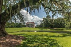 """""""Visiting Charleston's plantations is a must while visiting, Drayton Hall is no exception."""""""