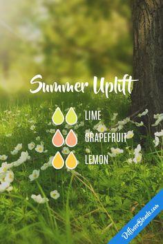 Summer Uplift