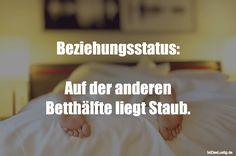 Beziehungsstatus:  Auf der anderen Betthälfte liegt Staub. ... gefunden auf https://www.istdaslustig.de/spruch/2335