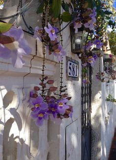 Murallita con flores. Asunción