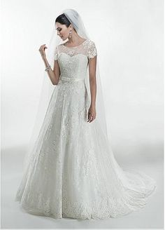 Gorgeous Tulle Jewel Neckline Natural Waistline A-line Wedding Dress With Venice Lace Appliques