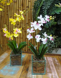Art Lilac, arranjos florais, flores artificiais, orquídeas artificiais , Os arranjos de flores artificiais deixam o ambiente sempre florido e acolhedor Tall Flowers, Home Flowers, Beautiful Gardens, Beautiful Flowers, Orchid Flower Arrangements, Indoor Orchids, Household Plants, Growing Plants, Ikebana