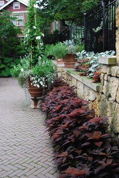 Beautiful border-Creative Country Mom's Garden