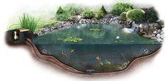Ponds For Small Gardens, Small Ponds, Fish Pond Gardens, Water Gardens, Pond Video, Small Fish Pond, Pond Aerator, Indoor Pond, Pond Kits
