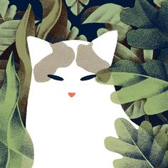 And Plants by Jeannie Phan Cat and Plants - A gallery-quality illustration art print by Jeannie Phan for sale.Cat and Plants - A gallery-quality illustration art print by Jeannie Phan for sale. Cat Plants, Cat City, Guache, Plant Illustration, Cat Drawing, Art Forms, Art Inspo, Pop Art, Art Prints