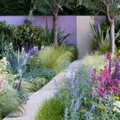 love the purple fence and grasses