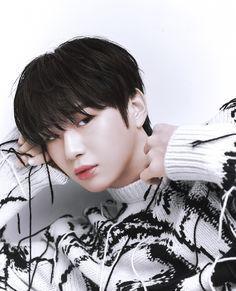 Produce 101, Bts Army Bomb, Eunji Apink, Daniel K, Boy Idols, Film Aesthetic, Kpop, Baby Daddy, My King