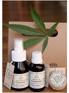 Kit de Cannabis #MedicalCannabis #CannabisMedicinal #Cannabis #Marihuana #NaturalMedicine #MedicinaNatural #HerbalMedicine #natural Cannabis, Soap, Bottle, Natural Medicine, Herbs, Atelier, Products, Flask, Ganja