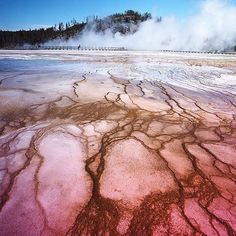 CRIMSON CRACKS  Sharing #patterninspiration from our #PATTERNITY community. Today with thanks to @mountmisty in Yellowstone National Park #nature #landscape #pattern #pink
