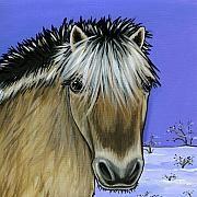 Leanne Wilkes Fjord Pony