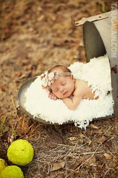 Cute newborn arrival picture