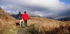 Run Trails, Mountain or Fell in Snowdonia With North Wales Premier Mountain Running Guides
