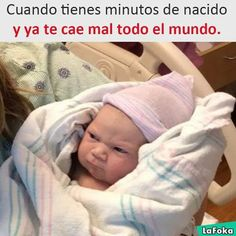 Daily Funny Memes And Pictures Release 11 Pics) – Page 4 of 4 – DrollFeed – funny kids Funny Baby Memes, Funny Kids, Funny Jokes, Baby Jokes, Cute Baby Meme, Baby Humour, Cute Funny Babies, Stupid Funny, Haha Funny