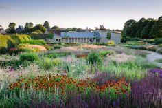 25 Gorgeous Piet Oudolf Garden Summer Ideas For Inspiration Planting Plan, Garden Beds, Landscape Architecture, Backyard Landscaping, Garden Inspiration, Perennials, Outdoor Living, Garden Design, Exterior