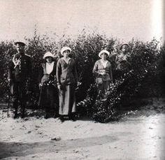 Anastasia, Tatiana, Olga and Nicholas II
