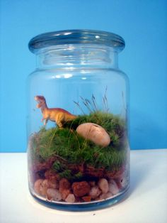 Dinosaur moss terrarium.  Could couple as an activity and as a thank you gift.