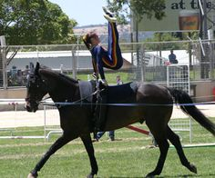 equestrian vaulting | Vaulting displays were held throughout Sunday between the classes.