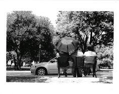 Outdoor Furniture, Outdoor Decor, Bench, Park, Artwork, Photography, Instagram, Home Decor, Work Of Art
