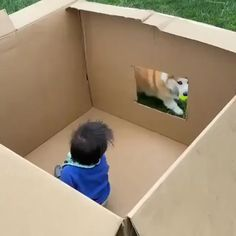 One way to play fetch and while keeping your toddler contained - your daily dose of funny cats - cute kittens - pet memes - pets in clothes - kitty breeds - sweet animal pictures - perfect photos for cat moms Funny Animal Pictures, Cute Funny Animals, Funny Cats, Cute Puppies, Cute Dogs, I Love To Laugh, Animals Images, Funny Laugh, Puppy Love