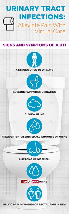 Today I'm going to talk about bladder issues, and how you can help ease, treat, or prevent them. There are a few different kinds...