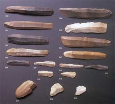 Stone tools used by Neanderthals