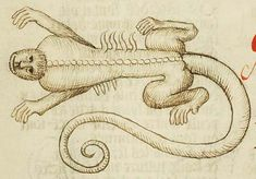 Koninklijke Bibliotheek, KB, 128 C 4, Folio 96v A crocodile, seen from above; the artist, who clearly did not know what a crocodile looked like, has given it a human face. This image is probably a copy of that in manuscript Koninklijke Bibliotheek, KB, 72 A 23.