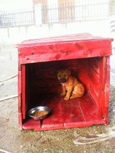 σκυλόσπιτο απο παλέτα mnv
