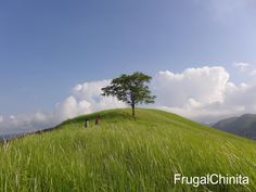 One of the many hills in Arakan Valley. When my workmates decided to go and explore Arakan Valley, located in North Cotabato, I immed. Frugal, To Go, Wanderlust, Country Roads, Explore, Mountains, Fall, Nature, Travel