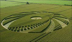 Crop-Circle_x