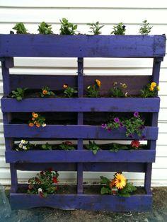 Purple pallet flowers