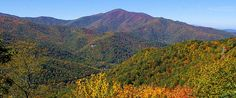 Cold Mountain, NC  fall, many trips. great place to camp (east fork of the Pidgeon River)