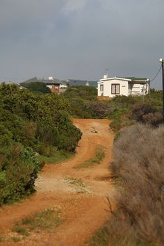 Betteys Bay Cape Town, Westerns, Country Roads, African, City, Travel, Beautiful, Trips