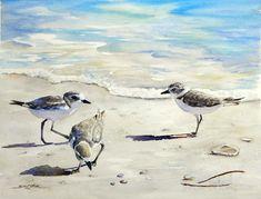 Snowy Plovers on the Beach web.jpg 663×504 pixels