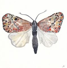 moth painting by United Thread http://www.etsy.com/shop/unitedthread #art
