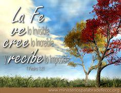 1 Pedro 1:21...para que vuestra fe y esperanza sean en Dios.