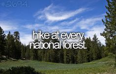Hike at every national forest.