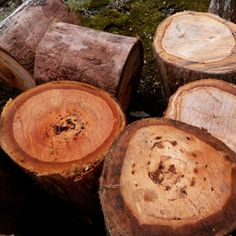 Logs are pretty too. I love the woody smell.