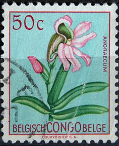 Congo Democratic Republic,  FLOWERS IN NATURAL COLORS. ANGRAECUM. Scott 327  A86.  50c, Perf 11 1/2.  Issued 1960 June 30.  Unwmk. 21 x 25 1/2 mm.
