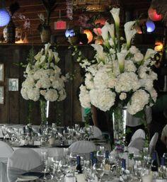 January 2011 Events Wedding Reception Photos on WeddingWire