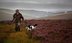 Peatlands burn as gamekeepers create landscape fit for grouse-shooting. Climate change experts say burning heather to increase bird yields is a threat to protected peat bogs.