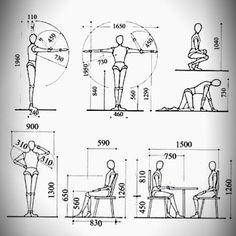 La Antropometría en el Diseño de Muebles | Mi Carpinteria.