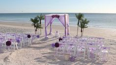 Our Island Oasis in lilac