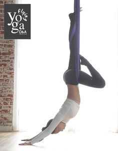 Aerial Yoga   D&A Flying Yoga   Los Angeles