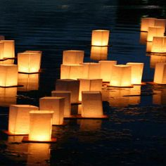 LumaBase Floating Water Lantern & Reviews | Wayfair