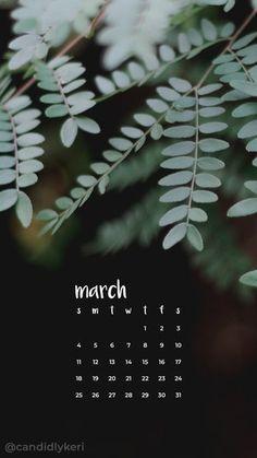 2018_March1M.jpg